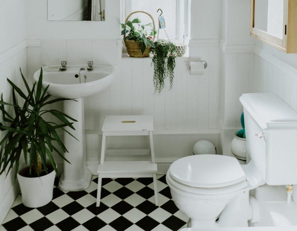 toilet-afmetingen